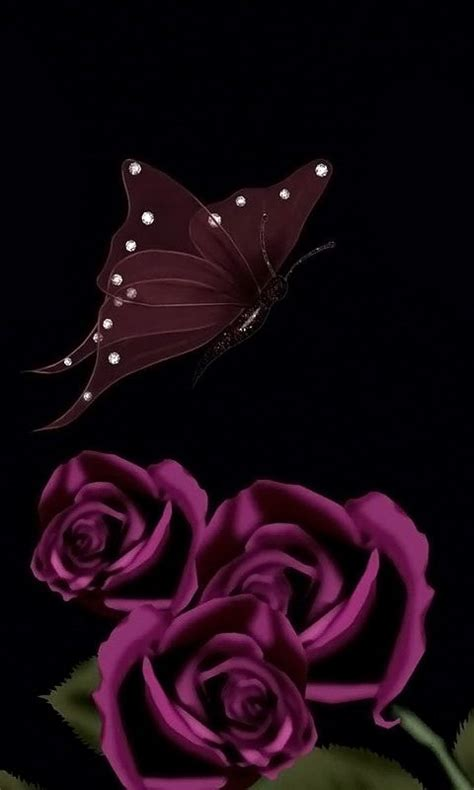 rose themes cell phone download 480x800 171 dark roses and butterfly 187 cell phone