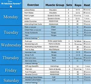 at home workout plans for workout plans for women exercise routines for women