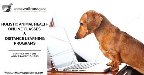 holistic animal health  classes  distance