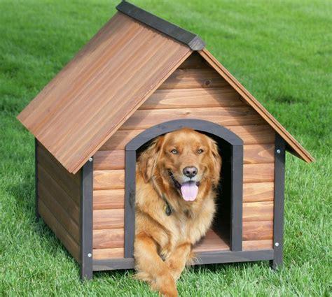 casa para perros como construir casa para perros de madera imagui