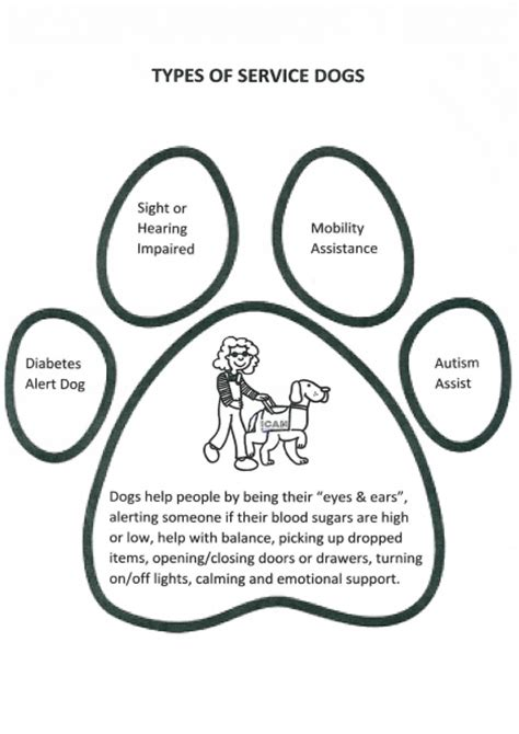 coloring pages service dogs coloring pages