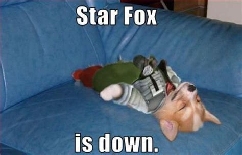 Star Fox Meme - star fox is down funny pictures quotes pics photos