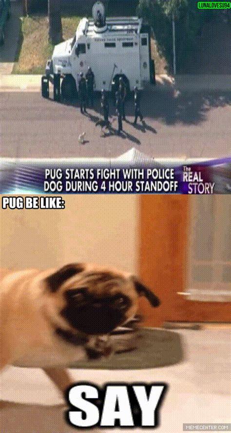 pug jokes the badass pug