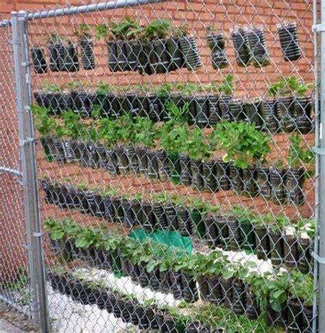 diy plastic bottle vertical garden