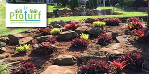 Durban Garden Service Companies 226 1 List Of Pro Turf Landscaping
