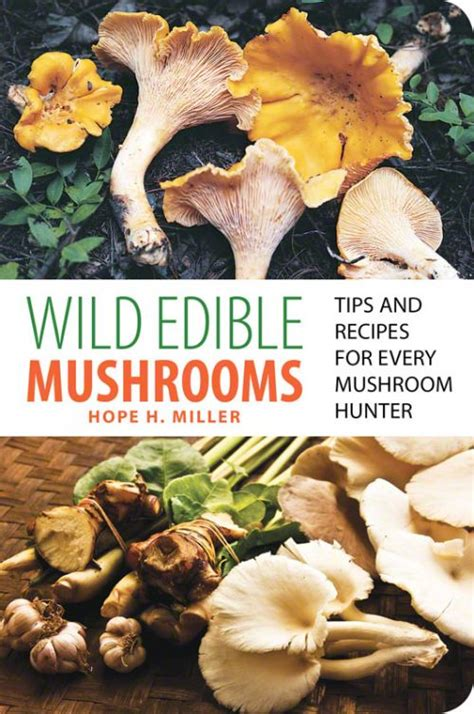 student s book of mushrooms of america edible and poisonous classic reprint books edible mushrooms og1161 16 95 out grow