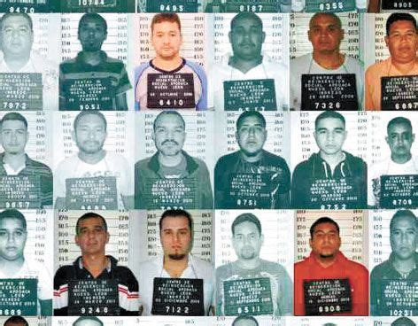 gulf cartel 390 best codex photos images on pinterest mexico
