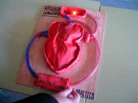 paso a paso maqueta corazon andac modelo de coraz 243 n humano alumnos 3 186 eso diversificaci 243 n