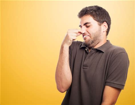 bathroom stinks why your bathroom smells like a sewer how to fix it build