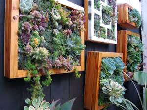 How To Plant Vertical Succulent Garden How To Grow A Vertical Succulent Garden World Of Succulents