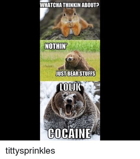 Bear Cocaine Meme - bear cocaine meme 28 images a rare pepe cats love