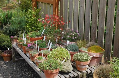 raised container garden raised container garden gardening and more gardening