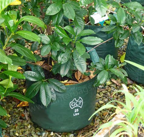 Garden Accessories Au 25 Litre Woven Planter Bags Nursery And Garden Supplies