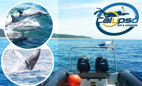 boat ride johannesburg calypso dive and adventure centre vouchers experience