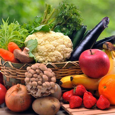 corso alimentazione corso di alimentazione oligenesi 174