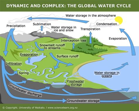 dynamic  complex  global water cycle science
