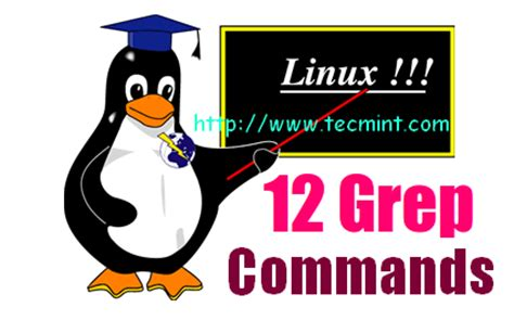 grep pattern exles 12 practical exles of linux grep command