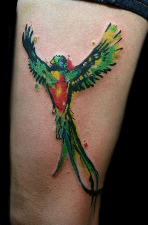 quetzal tattoo 25 best ideas about quetzal on