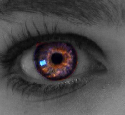 the all seeing eye by hawk moth on deviantart