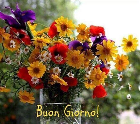 di giorno fiori buongiorno con un fiore buongiorno buona giornata