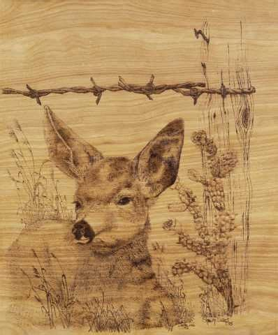 wood burning patterns  beginners  search results