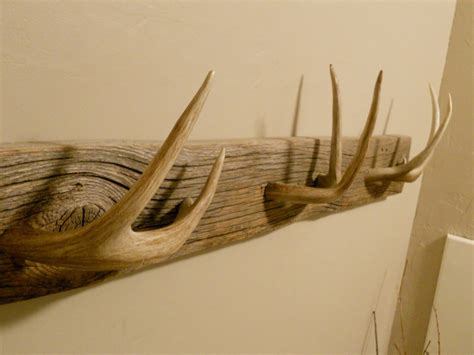 Antler Coat Hooks 10 Creative Uses For Your Shed Antlers