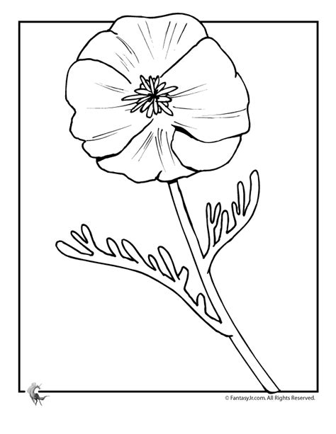 Free A Poppy Coloring Pages Poppy Colouring Pages