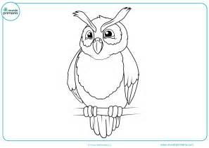 imagenes para colorear bosque dibujos de animales del bosque para colorear mundo primaria