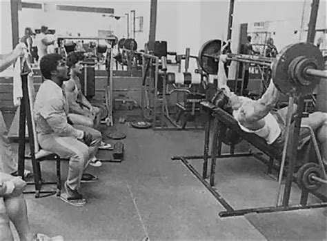 how much arnold schwarzenegger bench arnold schwarzenegger working out how to build muscles