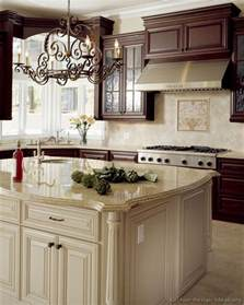 Antiqued Kitchen Cabinets by Pictures Of Kitchens Traditional Off White Antique