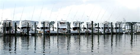 boat city marine sunset marina ocean city md fishing charter boat sport