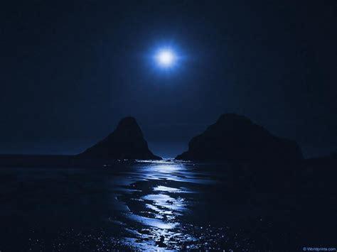 si anima la notte festivaliera le nostre foto buonanotte