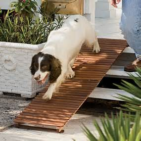 Dachshund Bed Ramps Steps Amp Seniors Supercoolpets Com Super Cool Pets