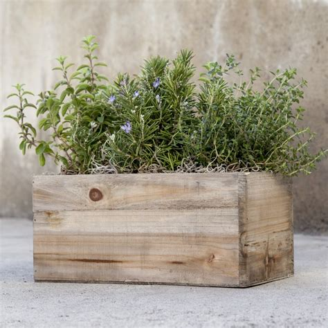 herb planter box cottage herb planter givingplants com
