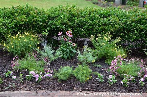 28 small perennial garden small perennial garden ideas photograph small perennial ga