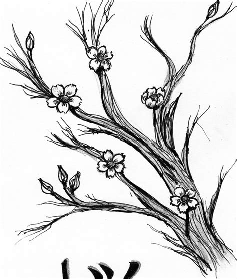 blossom coloring pages orange blossom coloring pages