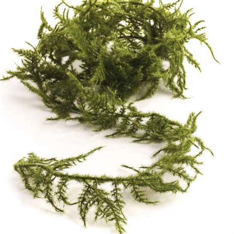 artificial asparagus fern garland garlands floral