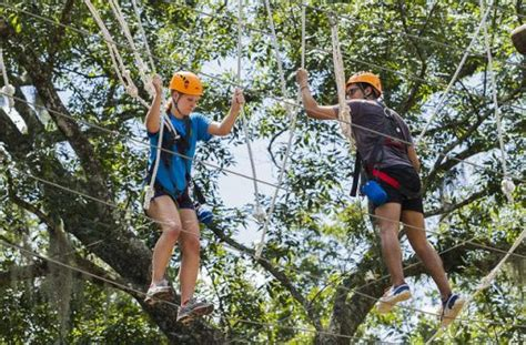 Uf Mba Ropes Course by Uf Outdoor Team Challenge Courses Outdoors Travel