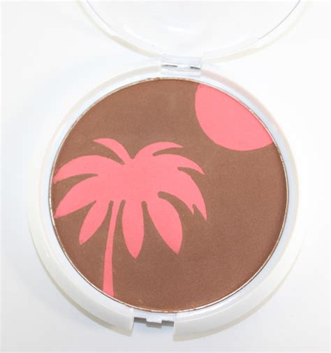 Everythings Bronzer In by N All Access Coloricon Bronzer Blush For