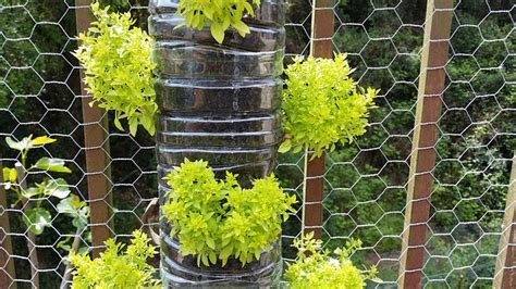 vasi per orto verticale vasi per il giardino verticale