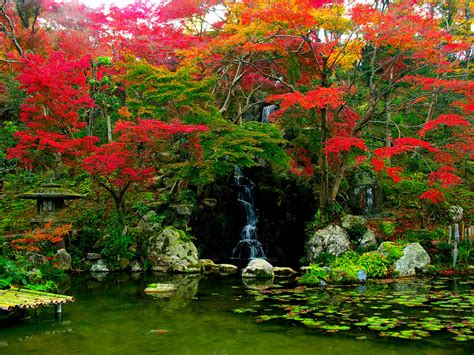 Flower Garden In Japan Japanese Garden Pictures Japan Garden Flowers Photo