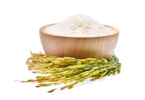 whole grains ulcerative colitis 10 causes of ulcerative colitis brown rice