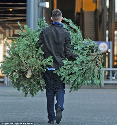 now that s an austerity christmas tree ikea slashes price
