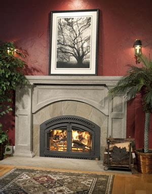 Fireplace Extrodinaire by Gas Stoves By Fireplace Extraordinaire Best Stoves