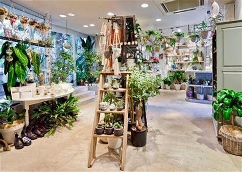garden of flower shop best 25 flower shop interiors ideas on