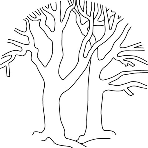Free Coloring Pages Of Bare Tree Outline Tree Coloring Page Outline
