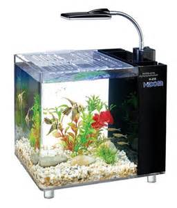 This aquarium comes with a built in filter in the back, including all