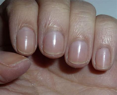 what color nail polish looks best on short nails nailsbystephanie short nails