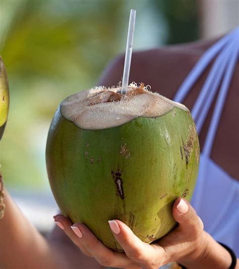 Can You Put Coconut Water In With Your Detox Drinks by Solved Local Guides Connect What Is The National Drink