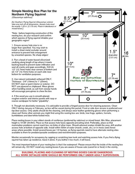 Southern Flying Squirrel Nest Boxes Glaucomys Org Flying Flying Squirrel House Plans